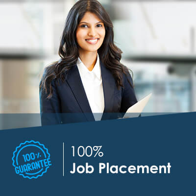 placement support job